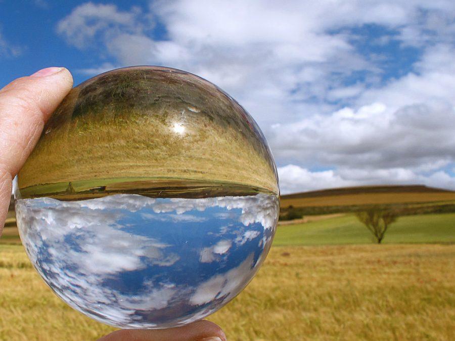 cuentos largos sobre el medio ambiente