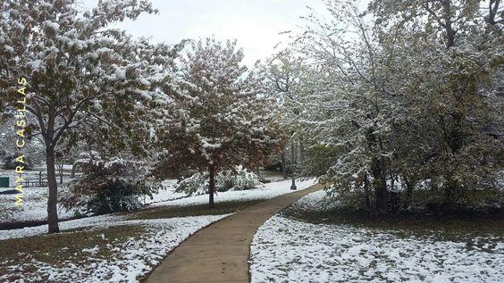 Nieve y cuentos